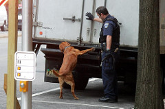 When is a K-9 search illegal?